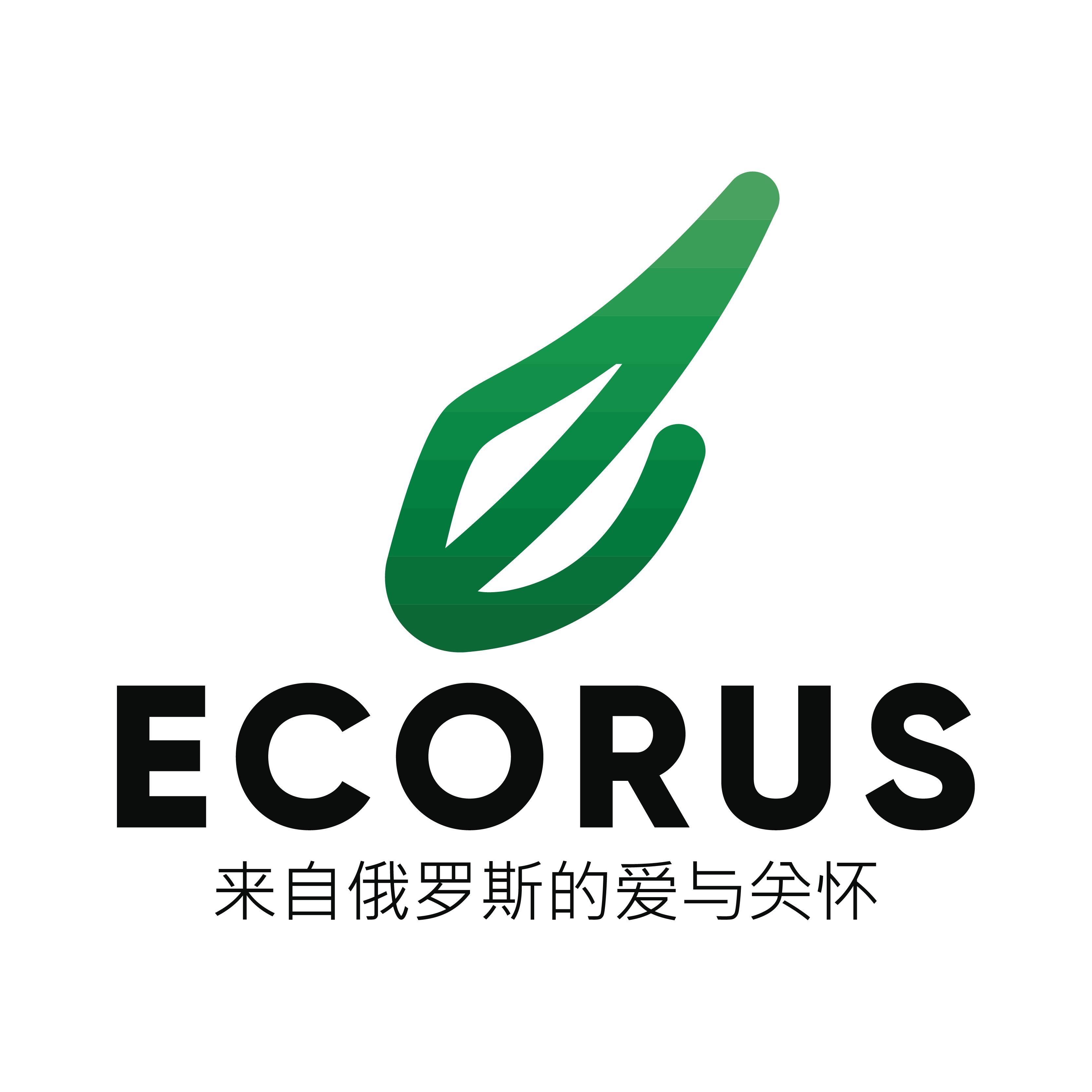 Логотип для поставщика продуктов питания из России в Китай фото f_4335eab87b6285f0.png