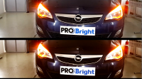 Probright (DEMO)