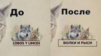Замена-перевод текста в ролике Корм для животных