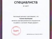 Контекстная реклама интернет-магазина до 1000 товаров (ведение Яндекс.Директ...