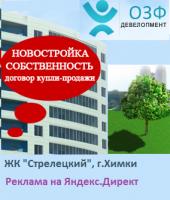 Новостройка в г.Химки на Яндекс.Директ (Москва и область)