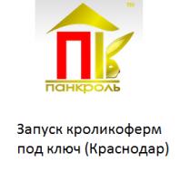 Яндекс.Директ для производителя кроликоферм Пан-кроль