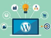 Wordpress разработчик