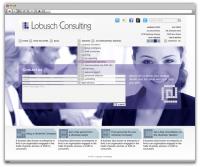 Lobusch Consulting