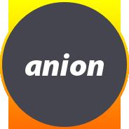 Компания Аннион (Тектовая)