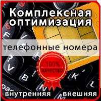 Оптимизация интернет-магазина продаже безлимитных номеров