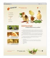 Дизайн Сайта Pernatie