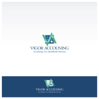 VIGOR Accounting2