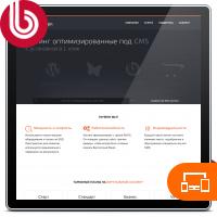 Корпоративный сайт хостинг-компании Chosten