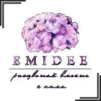 """Разработка логотипа для магазина одежды """"EMIDEE"""""""