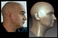 Моделирование головы