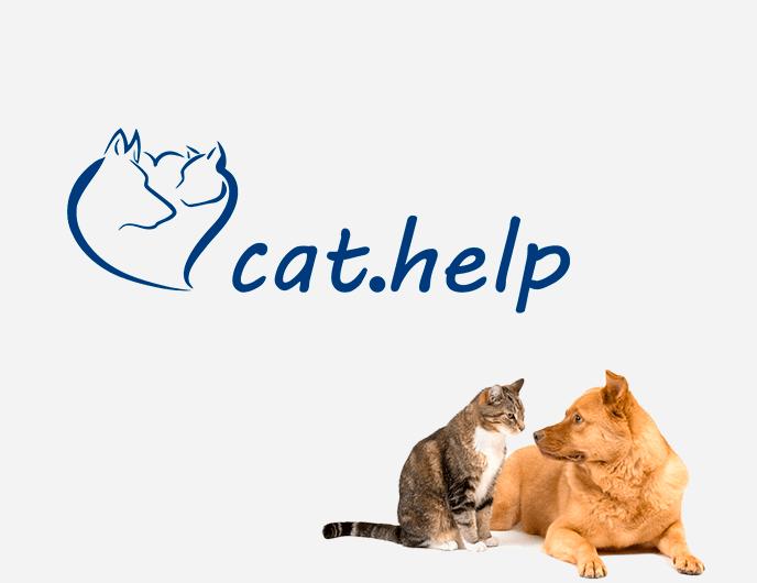 логотип для сайта и группы вк - cat.help фото f_81859df3e9a02959.png