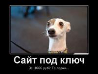 Создание сайта и интернет магазина под ключ за 11000 руб.