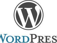 Установка готовой темы wordpress с сайта themeforest. Net и им подобных