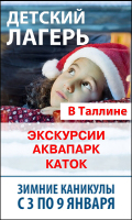 Флеш Банер «Каникулы в Таллине», 240x400