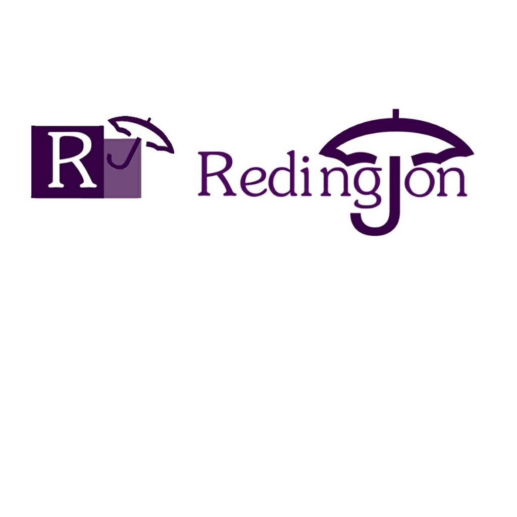 Создание логотипа для компании Redington фото f_34959b828e24db44.jpg
