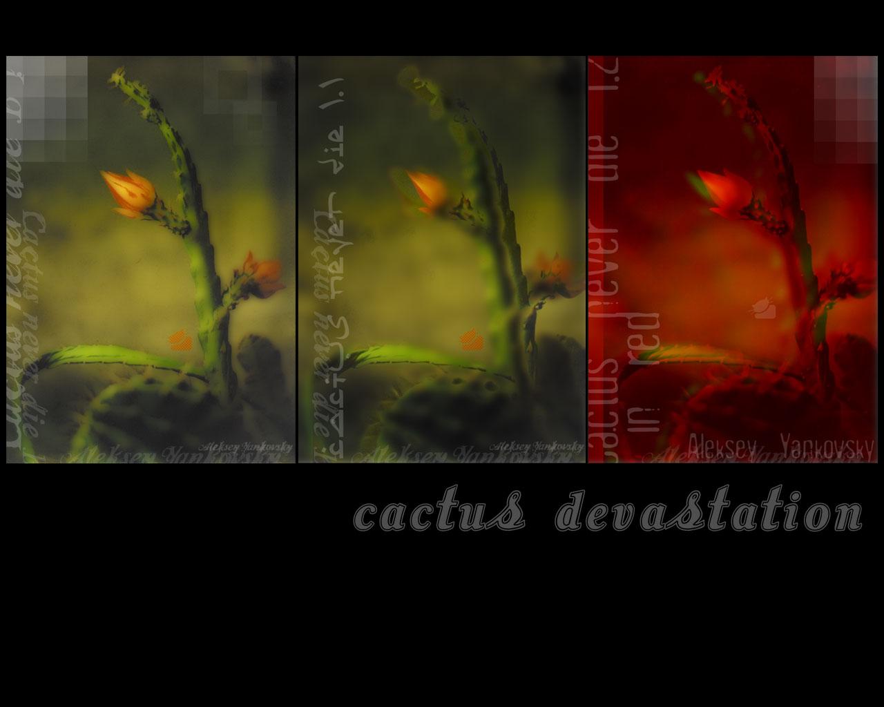 Cactus Devastation