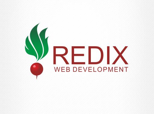 «Redix» - интернет решения
