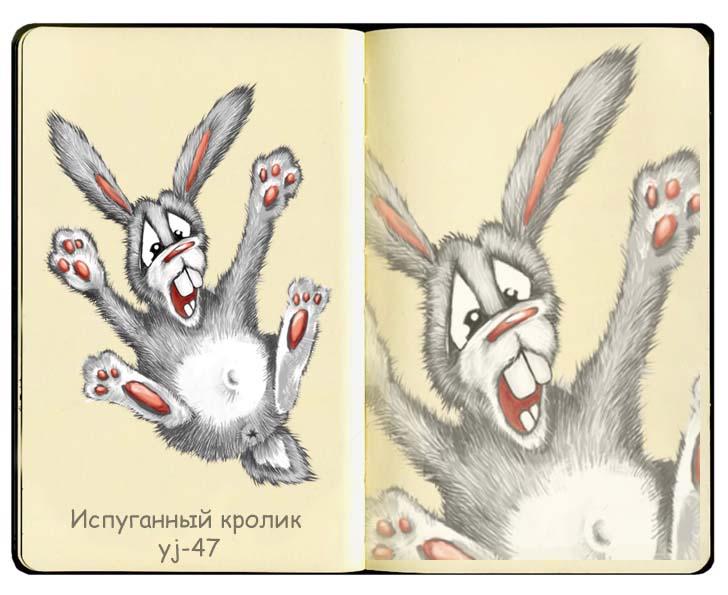 Испуганный кролик Портфолио...