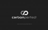 Вариант логотипа для компании, занимающейся разработкой и изготовлением изделий из углепластика(карбона).
