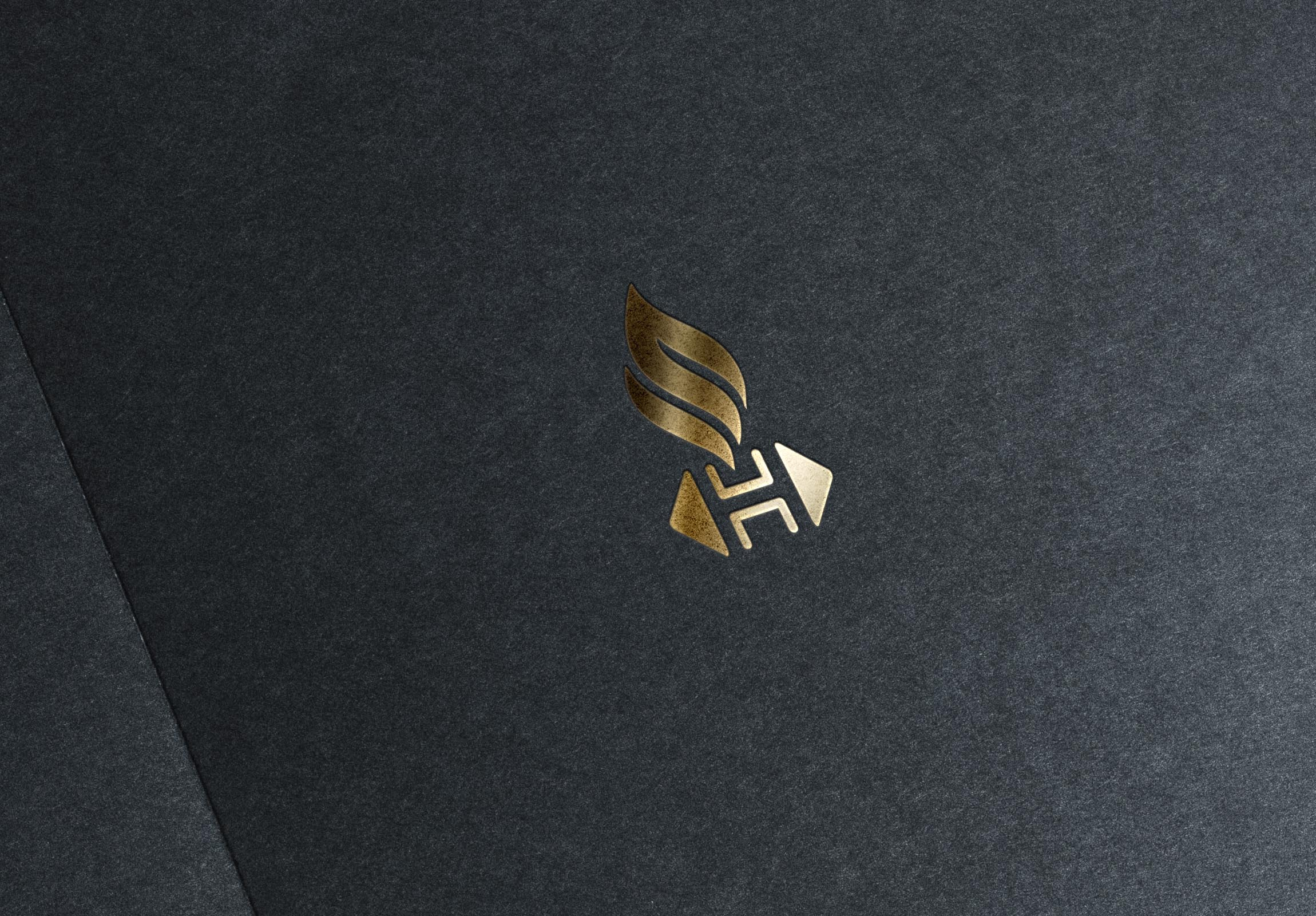 Разработка логотипа и фирменного стиля фото f_2695da542d12349e.jpg