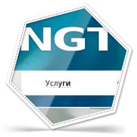 """Верстка сайта """"NGT"""""""