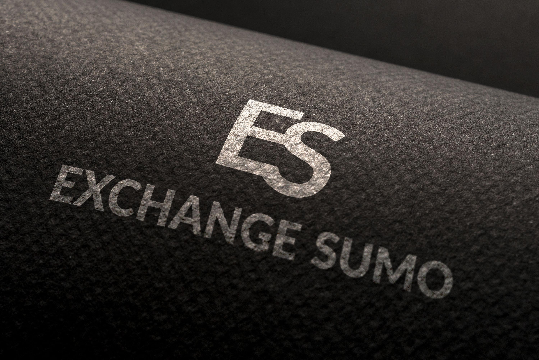 Логотип для мониторинга обменников фото f_0975bab9e3e1494c.jpg