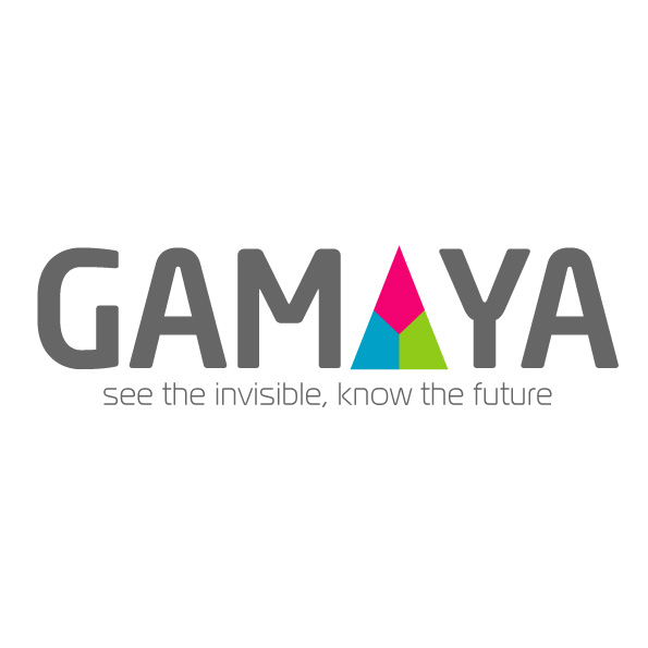 Разработка логотипа для компании Gamaya фото f_0225483128735cee.jpg