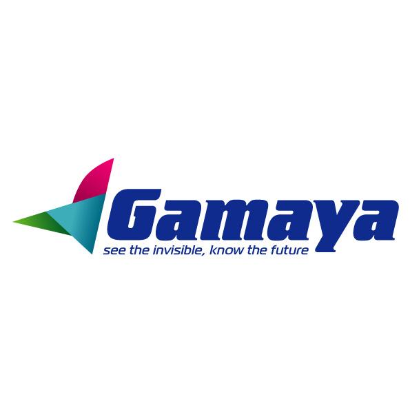 Разработка логотипа для компании Gamaya фото f_0405481e899ebd36.jpg