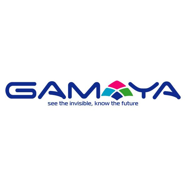 Разработка логотипа для компании Gamaya фото f_3865481e896762de.jpg