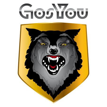 Логотип, фир. стиль и иконку для социальной сети GosYou фото f_507c29884e70c.jpg