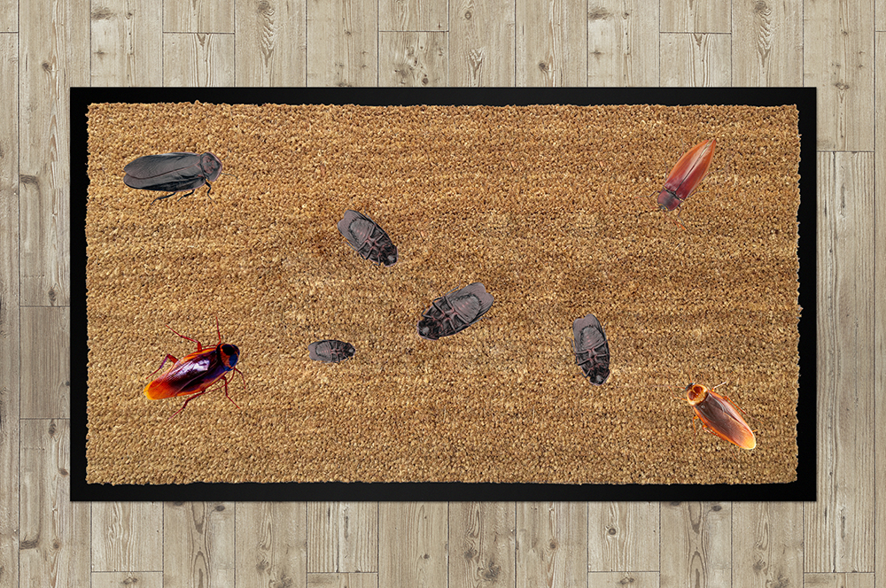 Сделать дизайн приддверного коврика фото f_053558c11651bacf.jpg