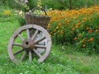 Экотуризм на фермерское хозяйство (для буклета)
