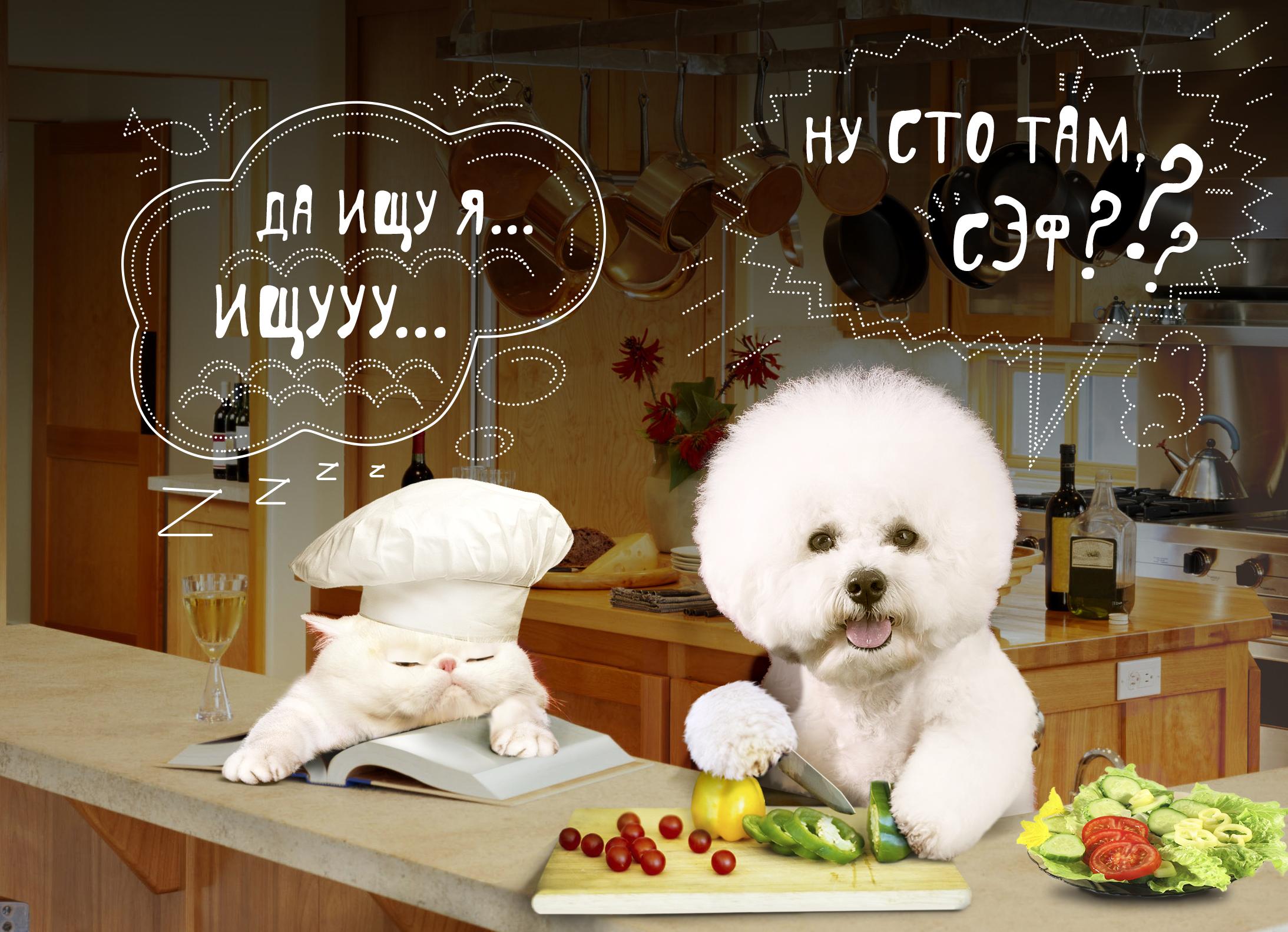 Создать интересный коллаж с участием животных фото f_87251dec6c535407.jpg