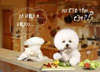 f_00151defa027ab47.jpg